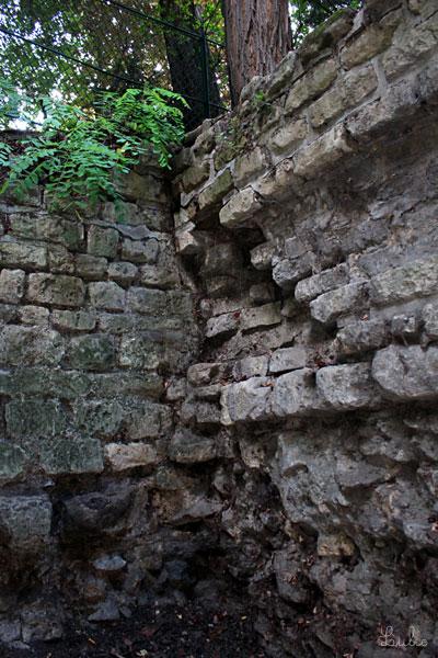 石のガタガタした感じが「遺跡」という感じです。