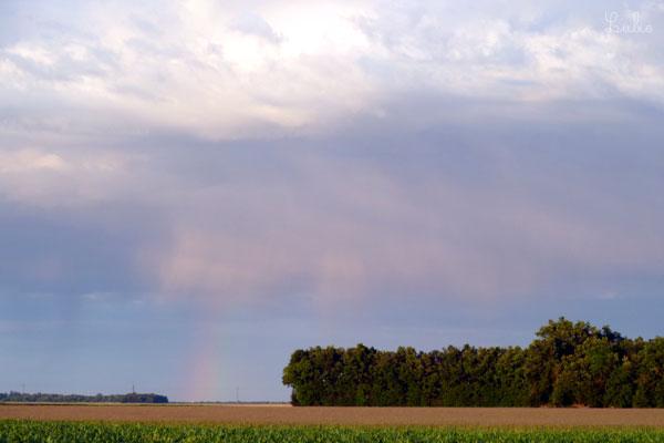 雲間から光と虹が。フランスではよく虹を見ます。スマフォカメラのせいか淡色に見えますが実物は色が鮮明で、透明感がきれいでした。