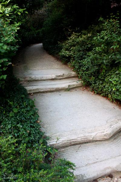 波のようになめらかな表情の階段を上っていくと、