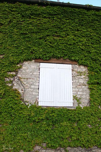 こちらのドアは、両脇にぱたんと開いて、下にある金具で壁に固定するタイプです。