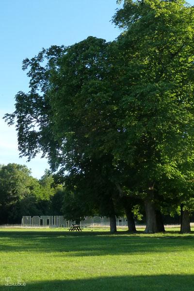 シャマランド城の庭