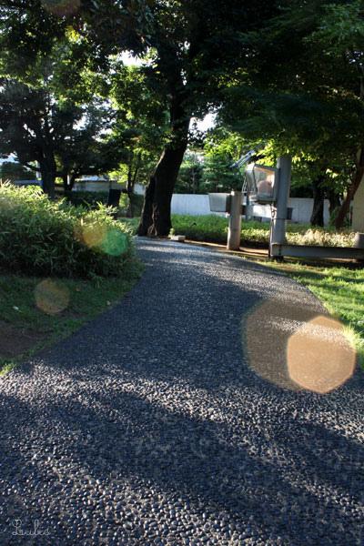 原美術館の庭の道
