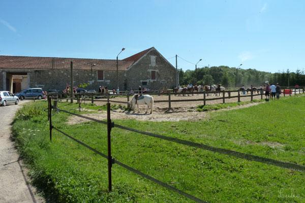 パリの南西、Domaine de St-Jean de Beauregardに行く途中、乗馬学校らしきものが。ちょっと寄り道♪