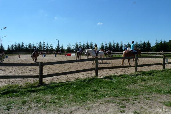 フランス 乗馬学校