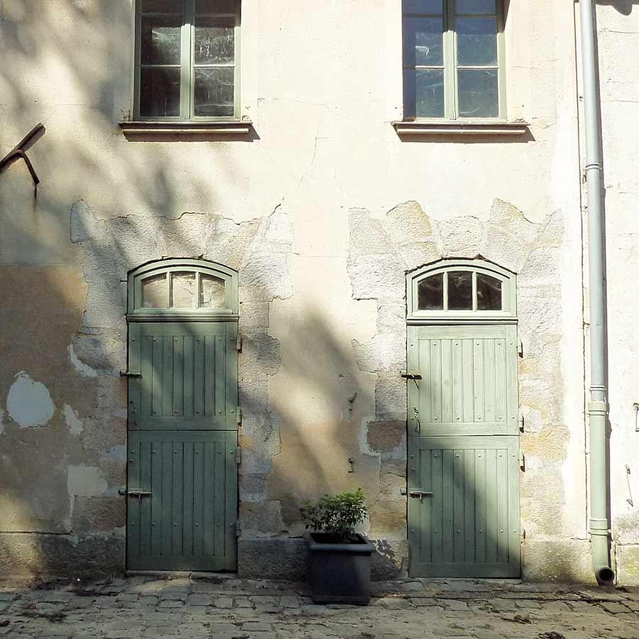 きれいな色のドアと壁に木の影