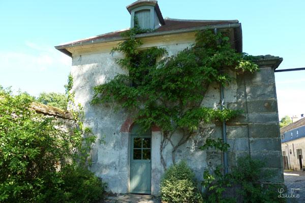 木と建物が一体化しています。