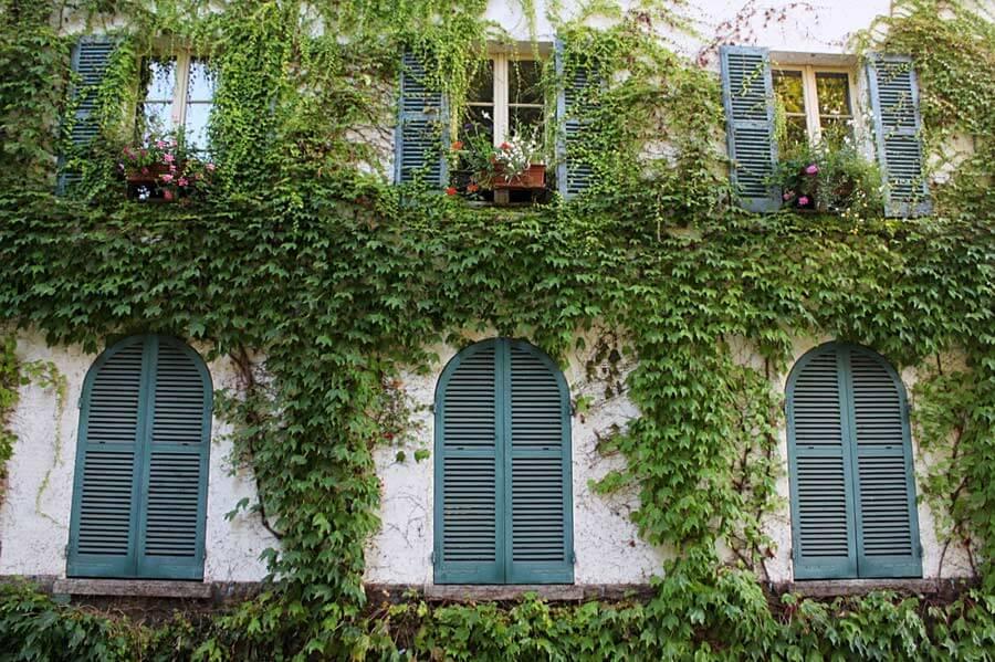 パリ ガーデニング博物館 ツタときれいな色の窓がある建物