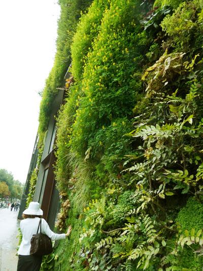 Musée du quai Branlyの外の植物の壁