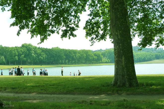 貯水池のほとりの大きな木。おそろいの服を着た年の違うこどもたちはボーイスカウトかな。