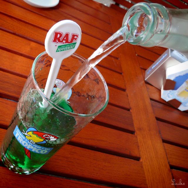 Menthe à l'eauを注文。ジャンキーな色です。ミントの生の葉っぱが入った水Eau de mentheの方が好きだな。