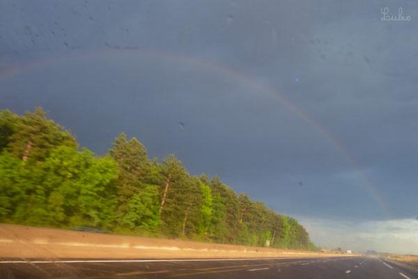 帰り道、車の中から虹が見えました。